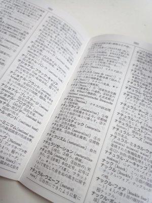 外来語新語辞典